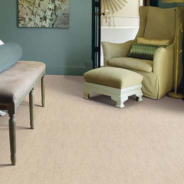 Caress Carpet by Shaw | Green Bay, WI