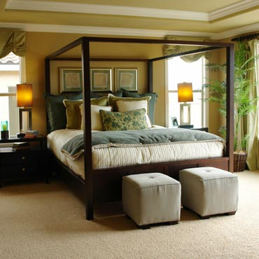 STAINMASTER® Carpet | Green Bay, WI