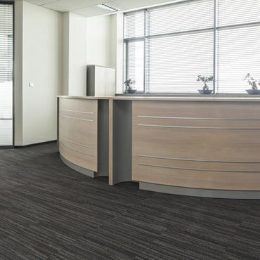 Kraus Contract Carpet | Green Bay, WI