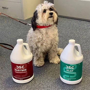 DSC Cleaning Products | Green Bay, WI
