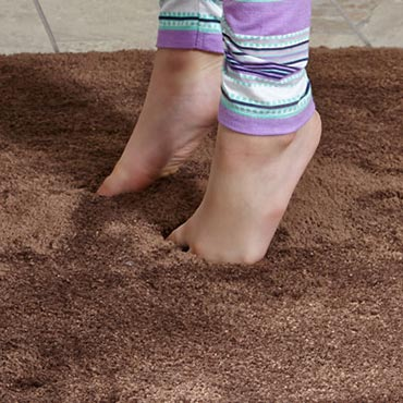 STAINMASTER® Area Rugs | Green Bay, WI